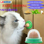 Healthy Cat Toys Snacks Catnip Sugar Candy Licking Solid Nutrition Energy Ball