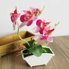 Artificial Fake Flowers Butterfly Orchid Plants In Pot Home Garland Party Decor