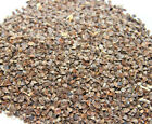 Buckwheat - Pigeon Feed