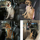 "Dog SUV truck van Car Safety pet Restraint Harness w Seat Belt strap -XS 7-15""G"