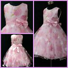 P3211 Pinks Princess Wedding Party Flower Girls Pageant Dresses SIZE 3-4-5-6-7-8