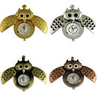 Lovely Owl Style Girl Women's Pocket Pendant Quartz Watch with Necklace , Q3