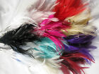 6 bunches of wired diamante feathers flowers crafts hats flowers 12 colours
