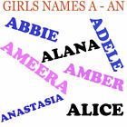 A - AN Girls Name Iron On Transfer for Personalised T Shirt , pillow cases ect