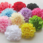22/88pcs New Ribbon Flowers Bows Sewing Appliques Craft Wedding Decoration RB099