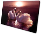 Animals Swans Love Hearts Pink SINGLE CANVAS WALL ART Picture Print VA