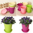 Colorful Plastic Flower Planter Plant Pots with Tray Home Office Garden Decor