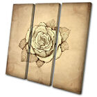 Floral Abstract Rose TREBLE CANVAS WALL ART Picture Print VA