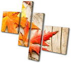 Floral Autumn Leaves MULTI CANVAS WALL ART Picture Print VA