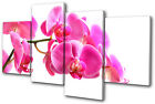 Floral Orchid Flowers MULTI CANVAS WALL ART Picture Print VA