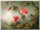 Passion Flowers and Hummingbirds Martin J Heade Repro Stretched Canvas Art Print