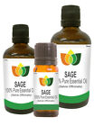 100% Natural Sage (White) Essential Oil - Multi Size, FREE P&P (Aromatherapy)