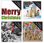 Advent Calendar Cards with envelope 16 cm square mini click collection with env