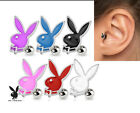 Genuine Playboy Bunny Tragus Bar 16g 6mm - Choose Colour  #PBT