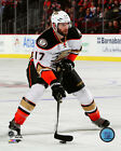 Ryan Kesler Anaheim Ducks 2014-2015 NHL Action Photo RV083 (Select Size)