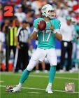 Ryan Tannehill Miami Dolphins 2014 NFL Action Photo (Select Size)