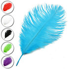 10-18 inch / 25-45cm Ostrich Feather 10pcs 20 pcs for Wedding Party Decoration