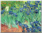 Stretched Canvas Art Print Irises by Vincent van Gogh Wildflowers Painting Repro