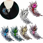1 Pc Women Rhinestone Crystal Drop Peacock Feather Brooch Broach Pin Fashion New