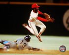 Ozzie Smith St. Louis Cardinals World Series Action Photo EJ037 (Select Size)