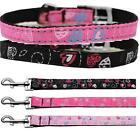 Crazy Hearts Classic Belt Style Buckle Nylon 3/8 Inch Wide Dog Collar CHARMS