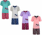 LADIES SHORT PYJAMA SET ANIMAL FARM T-SHIRT TOP & SHORTS UK 6-16 BNWT