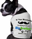 Mustache Big Brother AGAIN Dog Shirt Personalized Month and Year Doggy Clothing