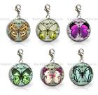 Butterfly on Writing Glass Top 20mm Clip On Charm Add to Your Bracelet Necklace