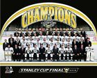 Pittsburgh Penguins 2016 NHL Stanley Cup Champions Formal Team Sit Photo (TB076)