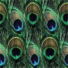 PEACOCK FEATHERS #2   COASTERS  SET U PICK SET SIZE