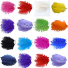 10PCS Ostrich Feathers approx 20-25cm/8-10in​ch wedding party
