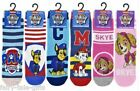 NICKELODEON PAW PATROL SOCKS SIZE 6 - 8.5 - New