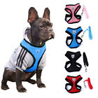 PA New Pet Control Harness for Dog & Cat Soft Mesh Walk Collar Safety Strap Vest