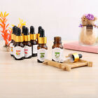 10ml Beauty Essential Oil Fragrance Pure Natural Aroma Drop Design For Diffuser