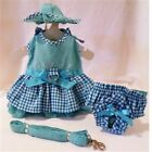 Puppy Love Dog Dress 4 Pc Set with Hat, Panties, & Leash size small