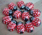 Valentines Small Foiled Chocolate Cream Filled Ladybirds Love Bugs Birthday