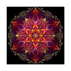 Full Drill Flower DIY 5D Diamond Painting Rhinestone Embroidery Picture Craft