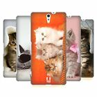 HEAD CASE DESIGNS CATS HARD BACK CASE FOR SONY PHONES 2