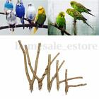 Pet Parrot Raw Wood Fork Stand Rack Toy Branch Perches For Bird Cage 6 Sizes