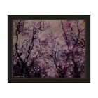 'Lost in the Forest' Framed Graphic Print Wall Art - Pink