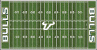 South-Florida-Bulls-Electric-Football-Vinyl-Field-Cover-Wall-Art