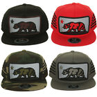 Top Level California Bear Embroidered Side Strap Hat Cap
