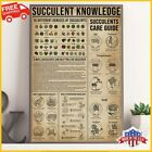 FREESHIP Succulent Knowledge Guide To Propagating Succulents Poster Succulent
