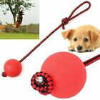 Indestructible Dog Solid Rubber Ball on a Rope for Pet Puppy Chew Toys Tug Balls