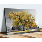 Canvas Wall Art Prints Unframed Large Tree Yellow Leaves Picture Home Room Decor