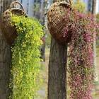 Artificial Vine Plant Fake Flower Hanging Wall Ornament Home Rooms Outdoor Decor