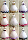WHITE PURPLE TULLE FLOWER GIRL DRESS CHILDREN PAGEANT DRESS SIZE S M  2 4 6 8 12