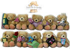 VALENTINES DAY GIFT IDEAS CUTE FOREVER FRIENDS BEAR PLUSH SOFT TOY PRESENT LOVE