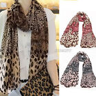 Women Ladies Small Large Leopard Print Chiffon Shawl Scarf Long Wrap Stole