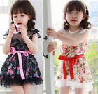Free Shipping Girls Baby Kids Toddlers Dress Pretty Princess Skirt Clothes 2-7Y